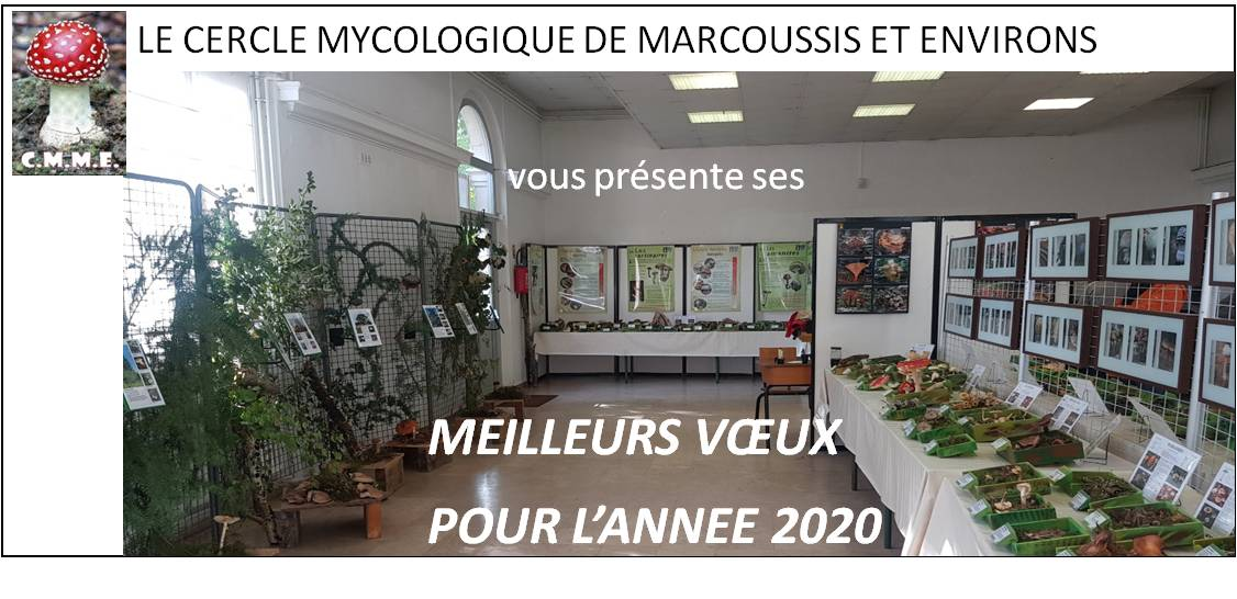 CMME Voeux2020